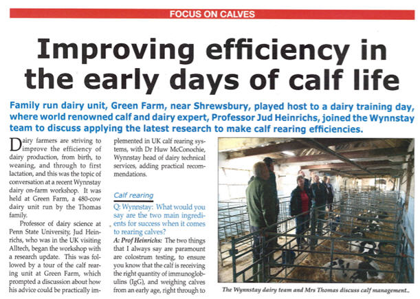 British Dairy Focus On Calves Article Image