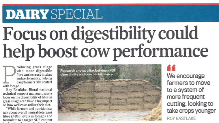 Focus On Digestibility Article Image
