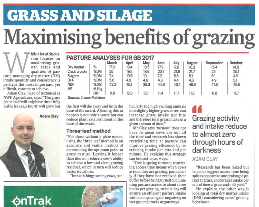 Grass and Silage Article Image