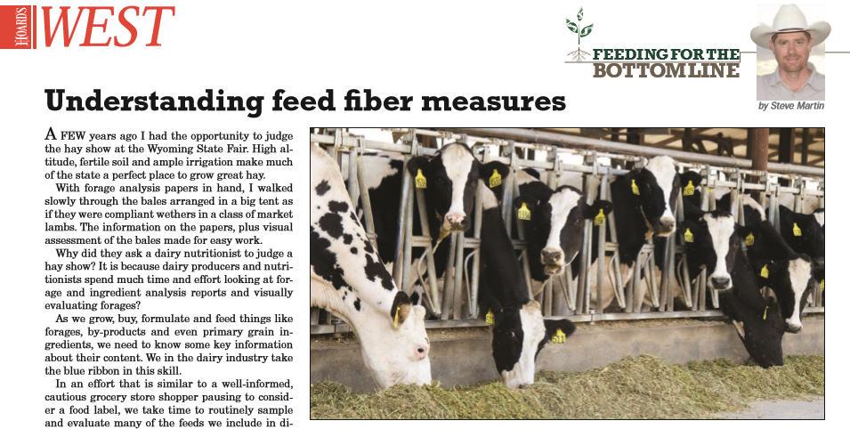 Understanding Feed Fiber Measures Header