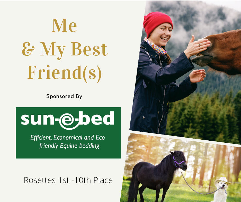 Me & My Best Friends Advert