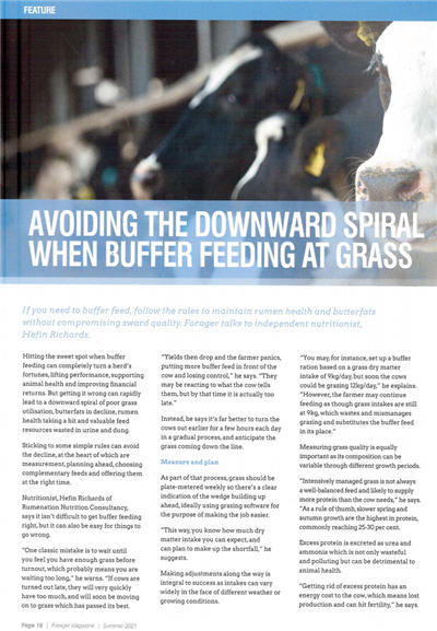 Forager Magazine Article Page 1 Image